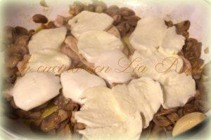 petto di pollo mozzarella e funghi (11)