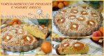 Torta alle albicocche frullate e yogurt greco